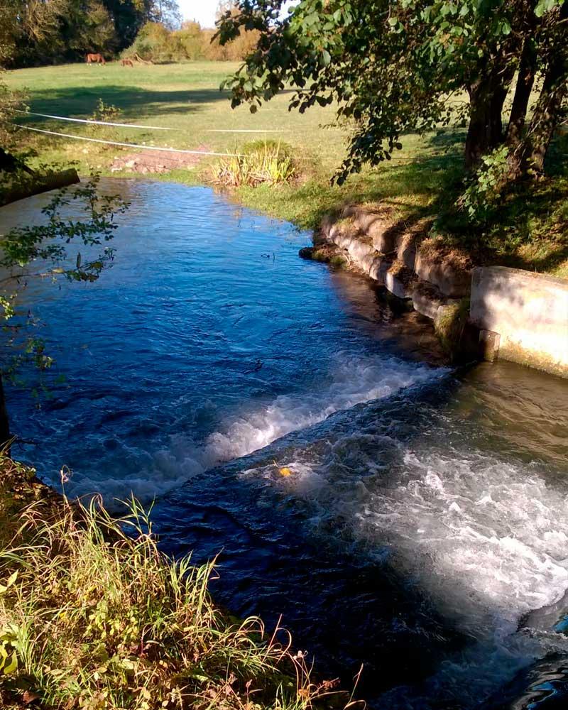 Rivière à proximité des gîtes